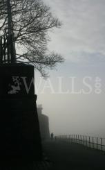Walls Mist