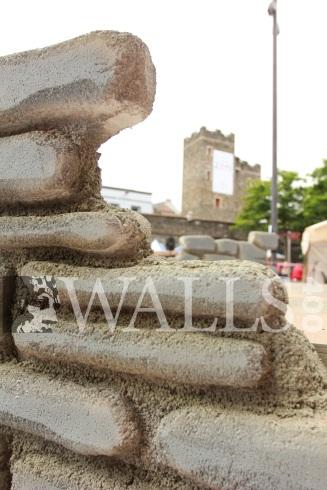 Derry Walls Day 2013 Gavan Connolly - 65