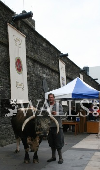 Derry Walls Day 2013 Mark Lusby - 21